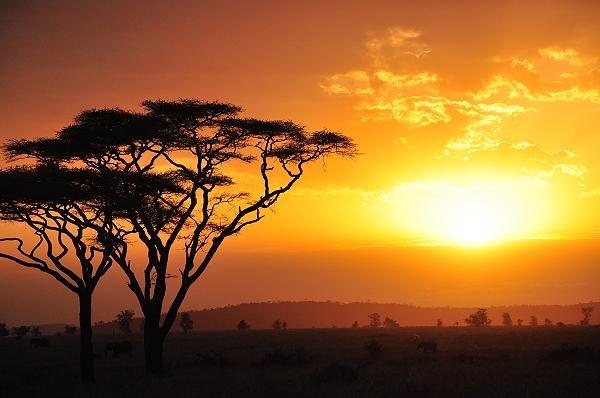 Sonnenuntergang-in-der-Serengeti