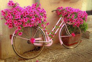 Giro d'italia 2.Etappe